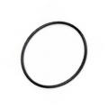FTC4919 Galinės stebulės riebokšlis-sandarinimo žiedas (Discovery 2)