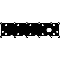 LVP100400 Vožtuvų dangtelio tarpinė 2.0L TD